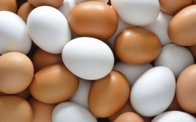 Adaptar el peso del huevo a las necesidades del mercado mediante el manejo